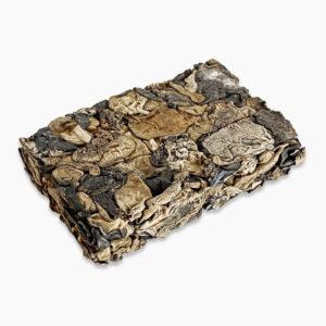 Грибы древесные черные Муэр