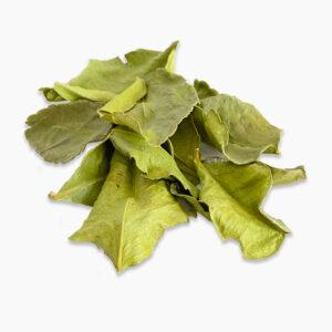 Листья каффир-лайма